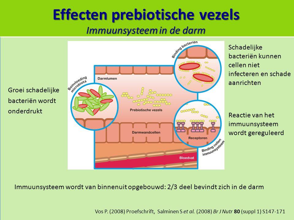 Effecten prebiotische vezels Immuunsysteem in de darm