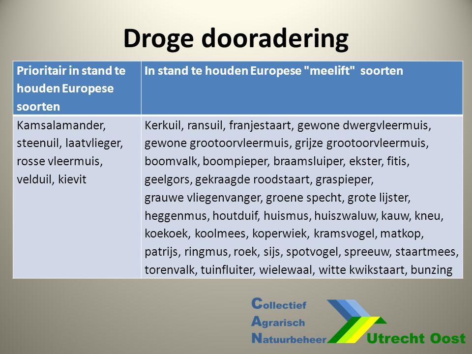 Droge dooradering Prioritair in stand te houden Europese soorten