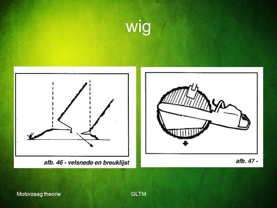 wig Motorzaag theorie GLTM