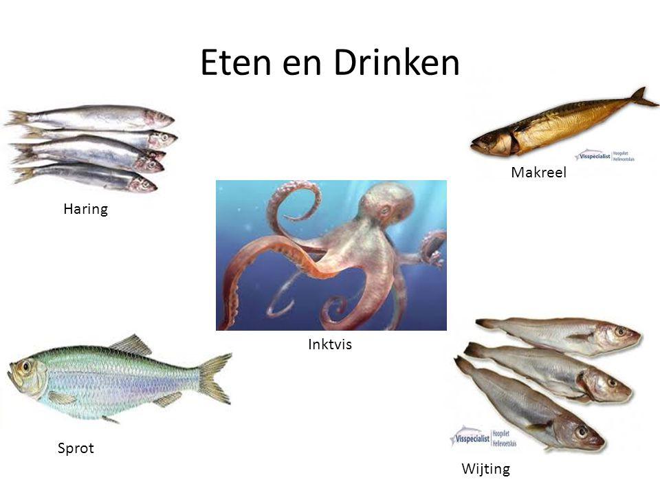 Eten en Drinken Makreel Haring Hoofdstuk 3 Inktvis Sprot Wijting