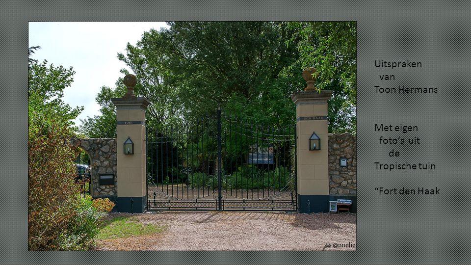 Uitspraken van Toon Hermans Met eigen foto's uit de Tropische tuin Fort den Haak