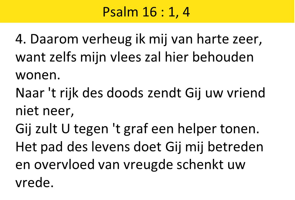 Psalm 16 : 1, 4 4. Daarom verheug ik mij van harte zeer, want zelfs mijn vlees zal hier behouden wonen.