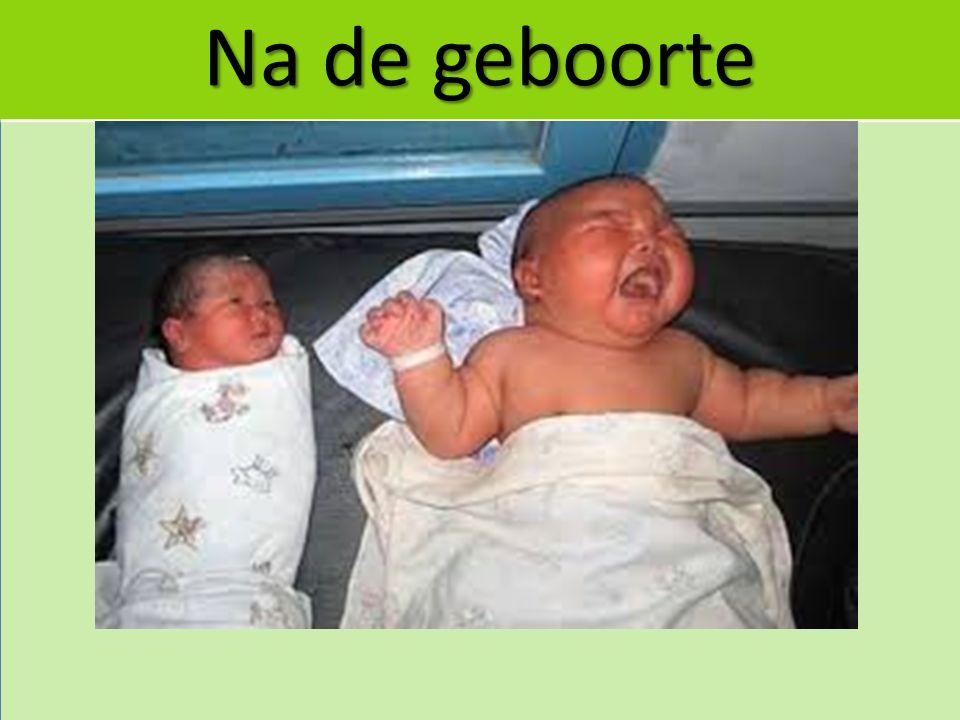 Na de geboorte