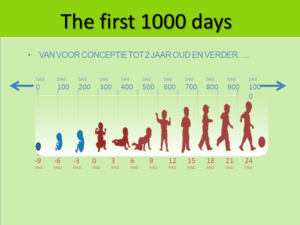 The first 1000 days Van voor conceptie tot 2 jaar oud en verder….. 100