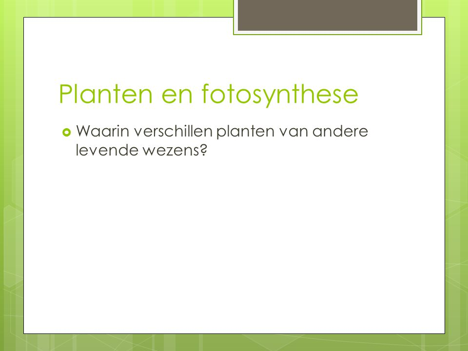 Planten en fotosynthese