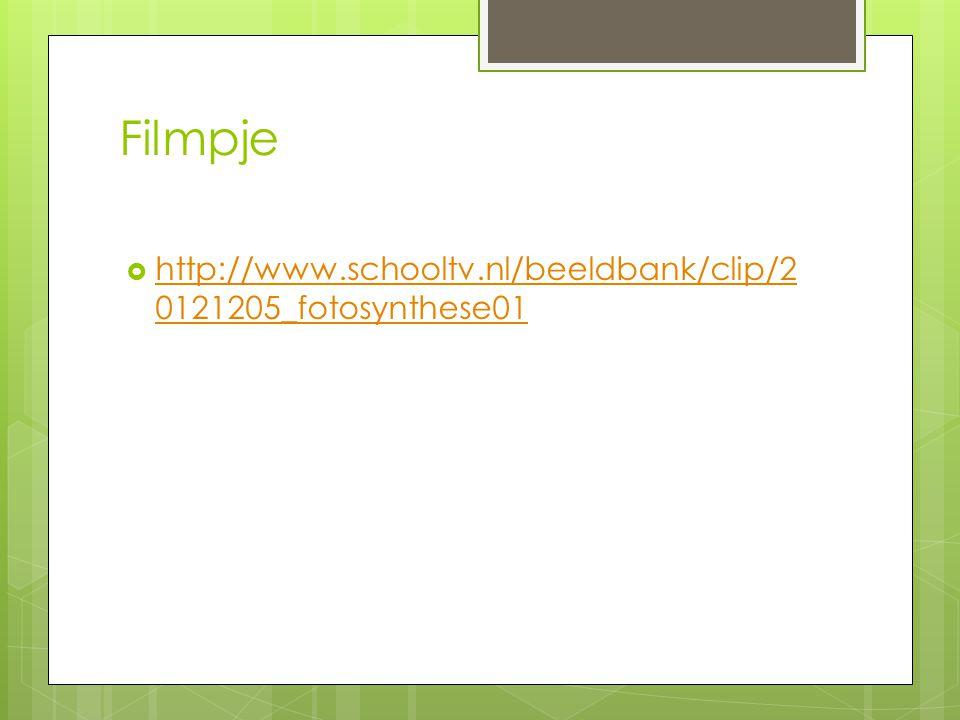 Filmpje http://www.schooltv.nl/beeldbank/clip/20121205_fotosynthese01