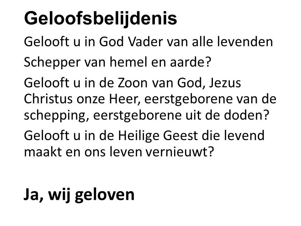 Geloofsbelijdenis Ja, wij geloven