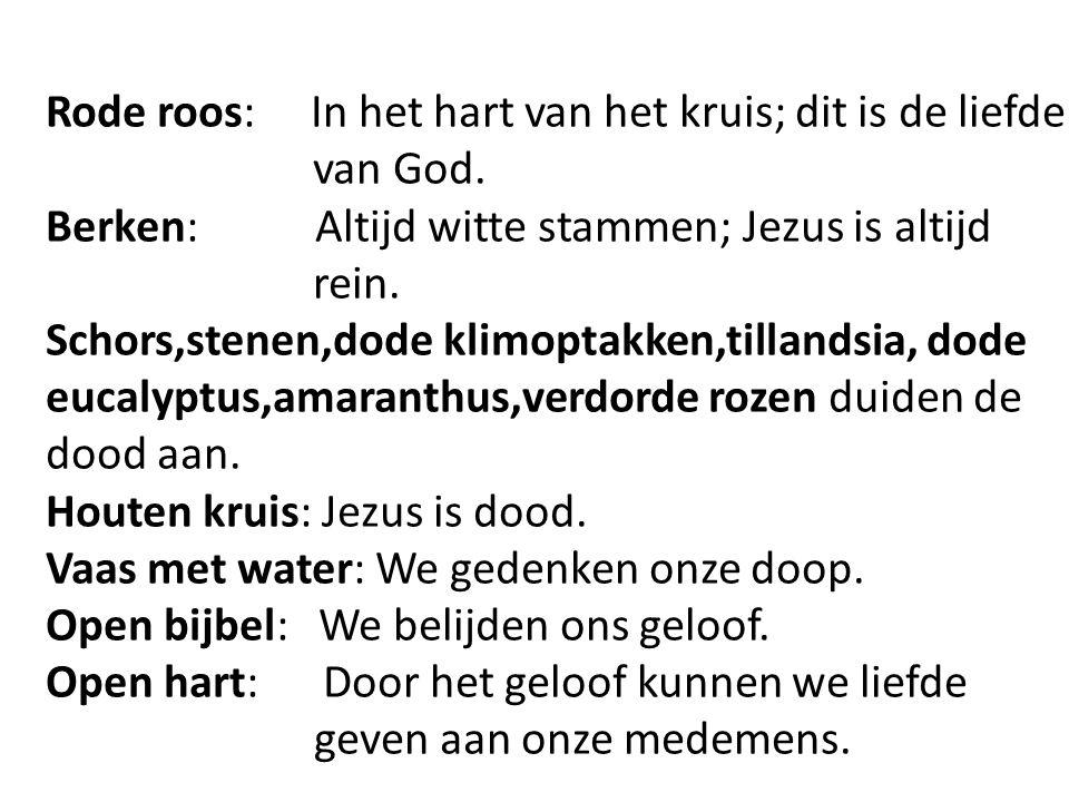 Rode roos: In het hart van het kruis; dit is de liefde van God.