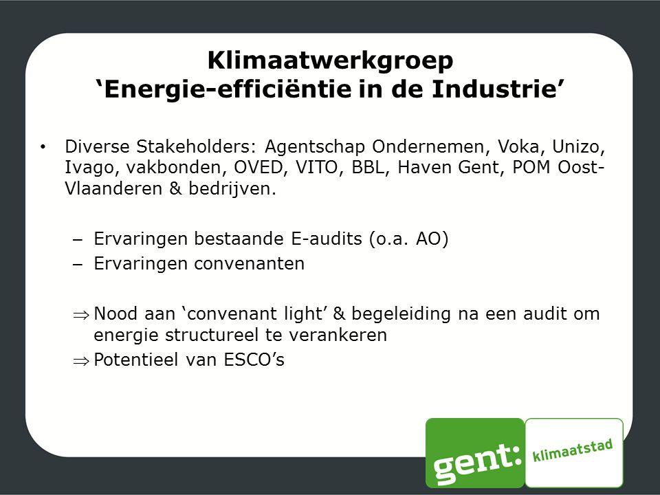 'Energie-efficiëntie in de Industrie'