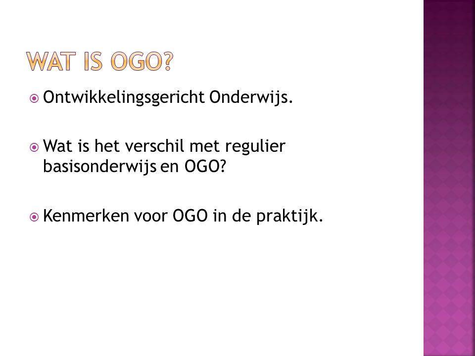 Wat is ogo Ontwikkelingsgericht Onderwijs.