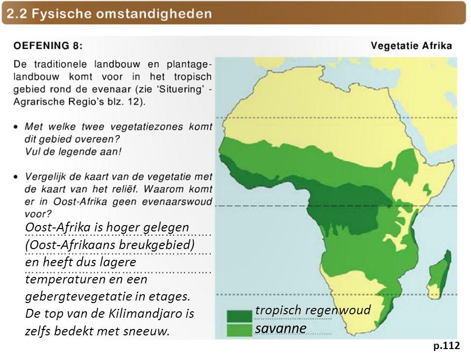 Oost-Afrika is hoger gelegen (Oost-Afrikaans breukgebied) en heeft dus lagere temperaturen en een gebergtevegetatie in etages. De top van de Kilimandjaro is zelfs bedekt met sneeuw.