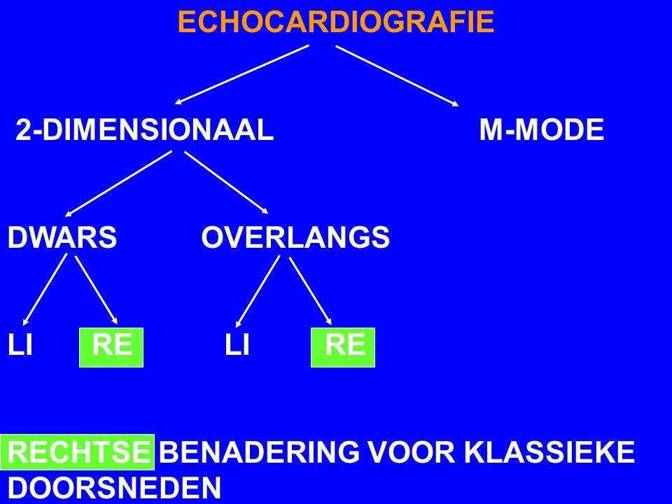 ECHOCARDIOGRAFIE 2-DIMENSIONAAL M-MODE. DWARS OVERLANGS. LI RE LI RE.