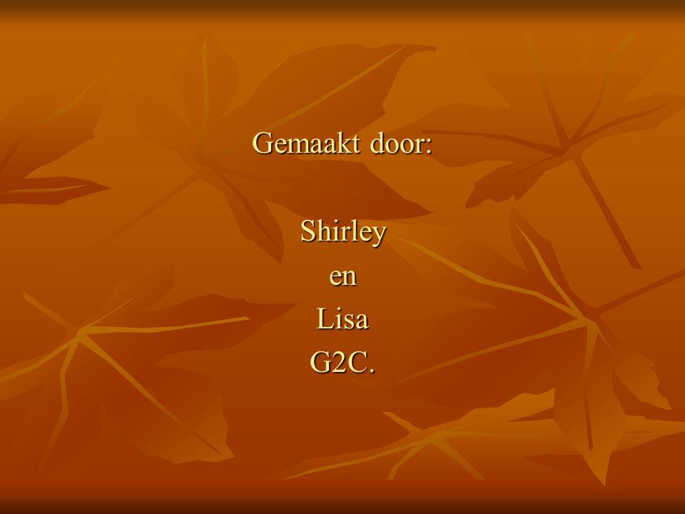 Gemaakt door: Shirley en Lisa G2C.