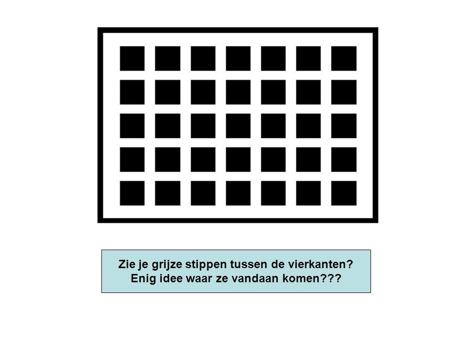 Zie je grijze stippen tussen de vierkanten