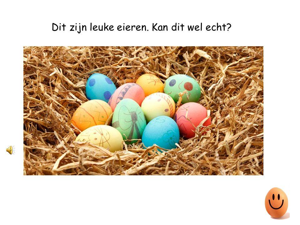 Dit zijn leuke eieren. Kan dit wel echt