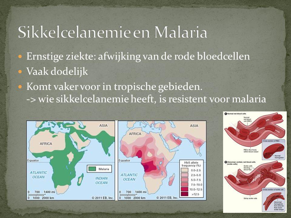 Sikkelcelanemie en Malaria