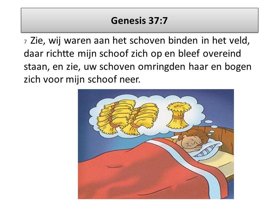 Genesis 37:7