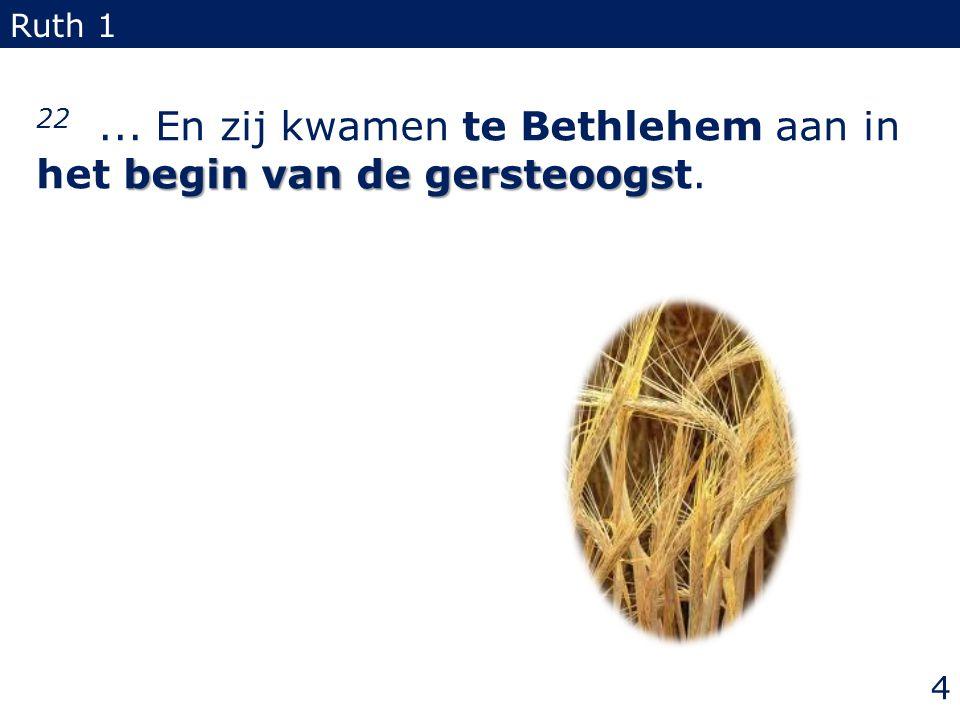 22 ... En zij kwamen te Bethlehem aan in het begin van de gersteoogst.