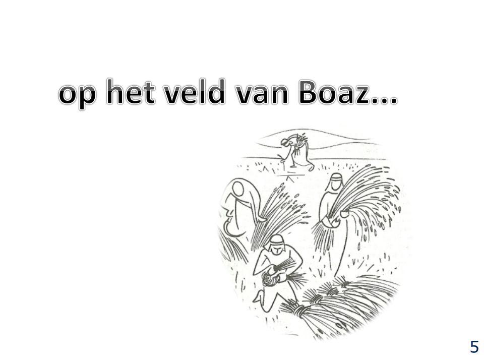 op het veld van Boaz... 5