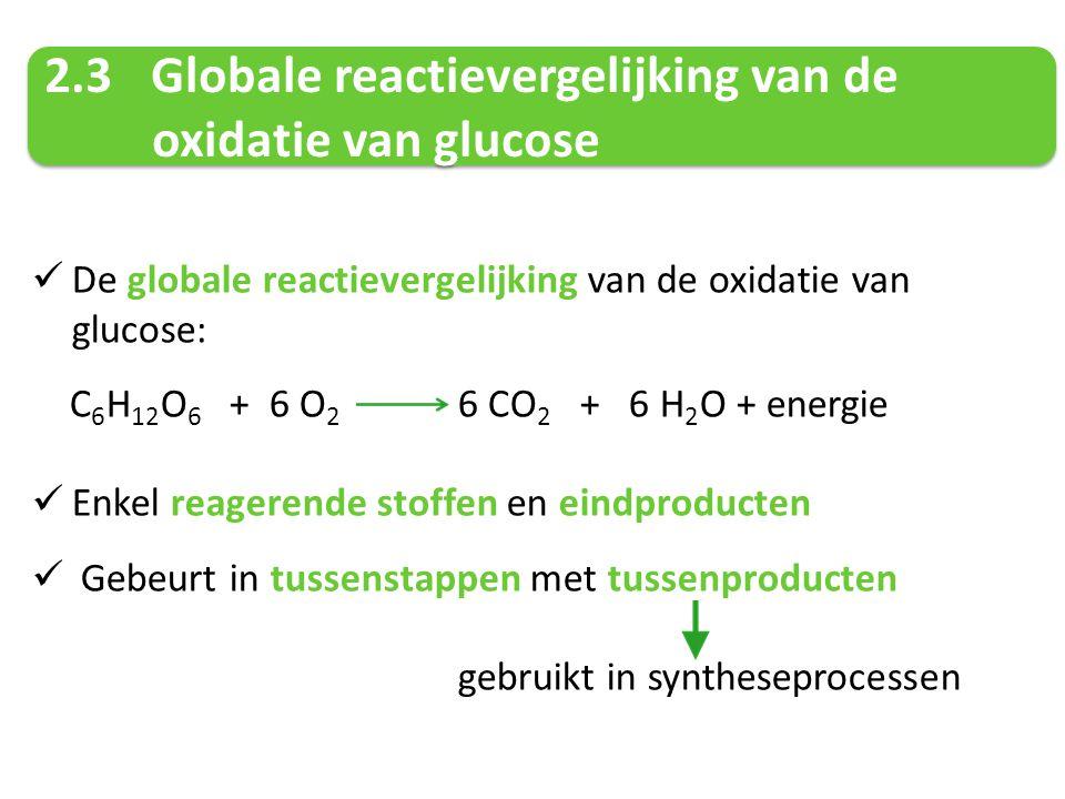 2.3 Globale reactievergelijking van de oxidatie van glucose