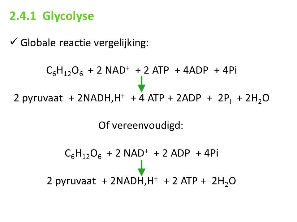 2.4.1 Glycolyse Globale reactie vergelijking:
