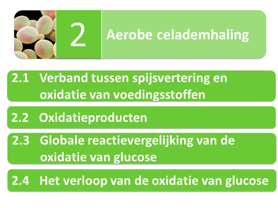 2 2.1 Verband tussen spijsvertering en oxidatie van voedingsstoffen