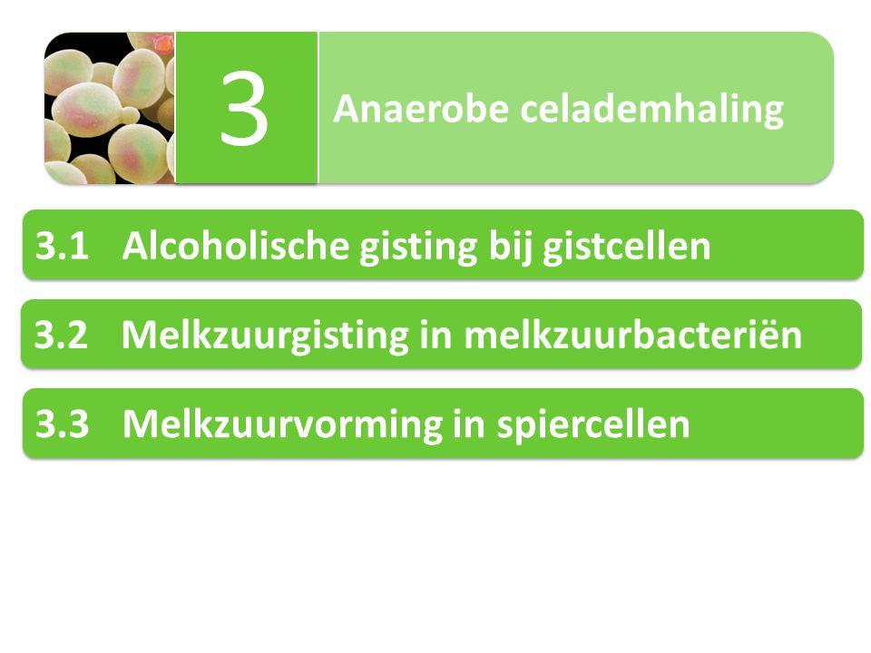 3 3.1 Alcoholische gisting bij gistcellen