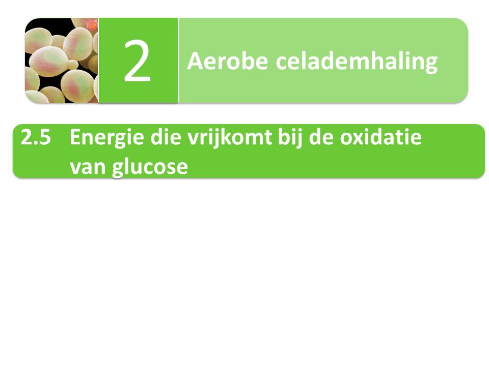 2 2.5 Energie die vrijkomt bij de oxidatie van glucose