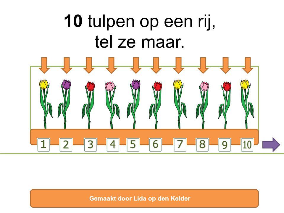 10 tulpen op een rij, tel ze maar.