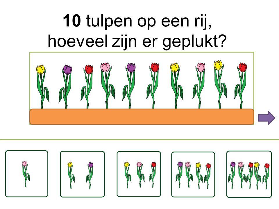 10 tulpen op een rij, hoeveel zijn er geplukt
