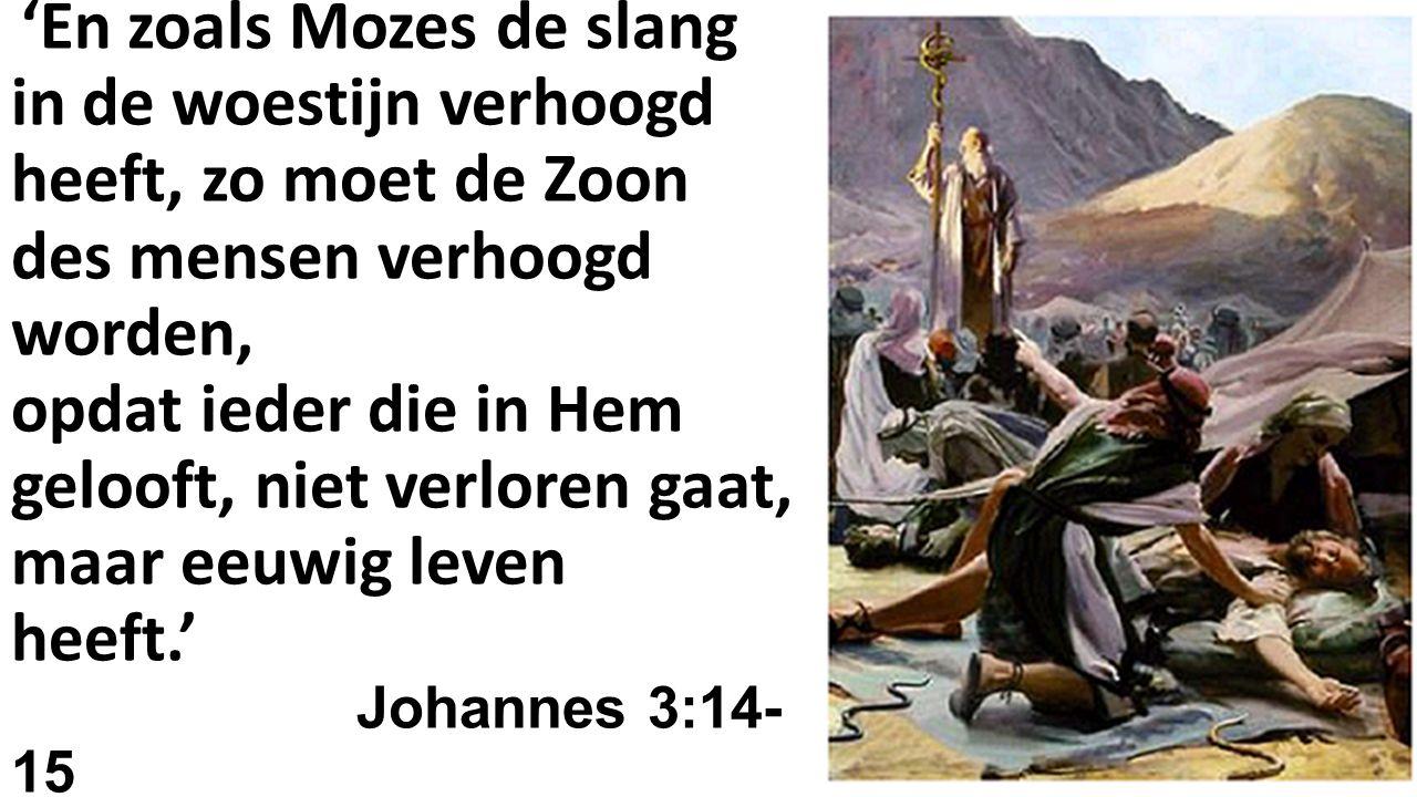 'En zoals Mozes de slang in de woestijn verhoogd heeft, zo moet de Zoon des mensen verhoogd worden, opdat ieder die in Hem gelooft, niet verloren gaat, maar eeuwig leven heeft.' Johannes 3:14-15