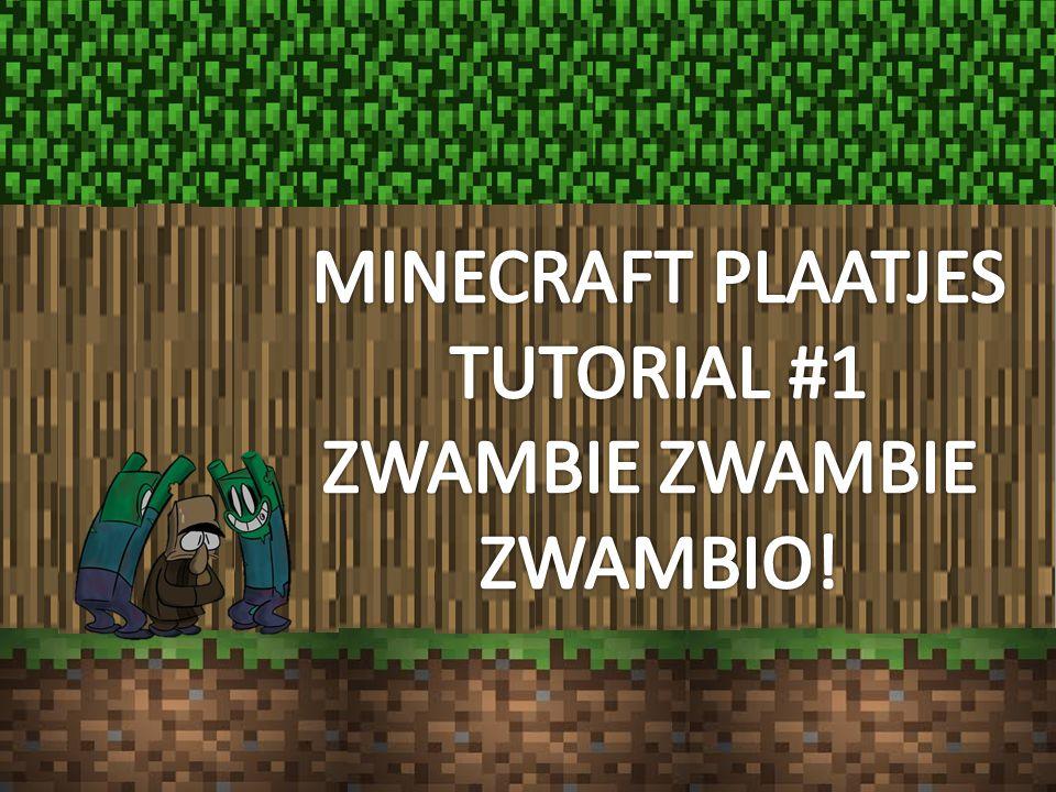 MINECRAFT PLAATJES TUTORIAL #1 ZWAMBIE ZWAMBIE ZWAMBIO!