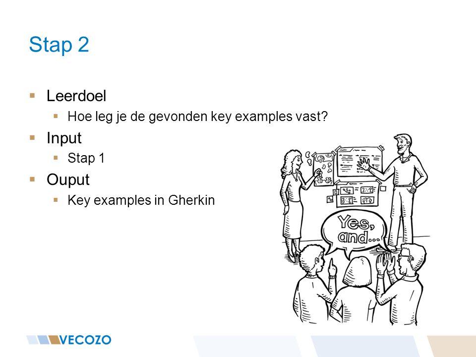 Stap 2 Leerdoel Input Ouput Hoe leg je de gevonden key examples vast