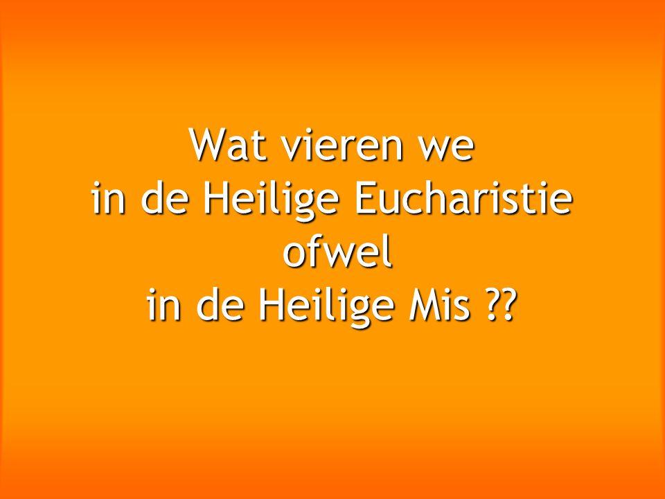 Wat vieren we in de Heilige Eucharistie ofwel in de Heilige Mis