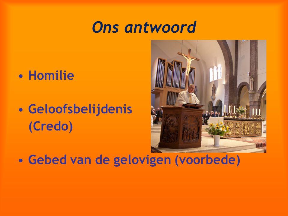 Ons antwoord Homilie Geloofsbelijdenis (Credo)