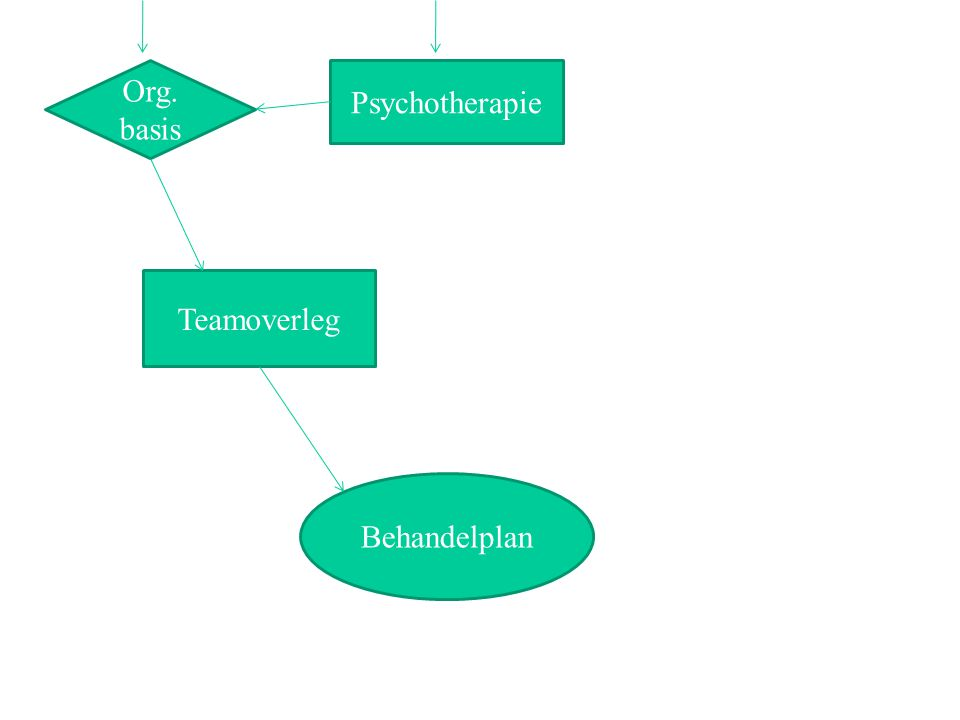 Org. basis Psychotherapie Teamoverleg Behandelplan