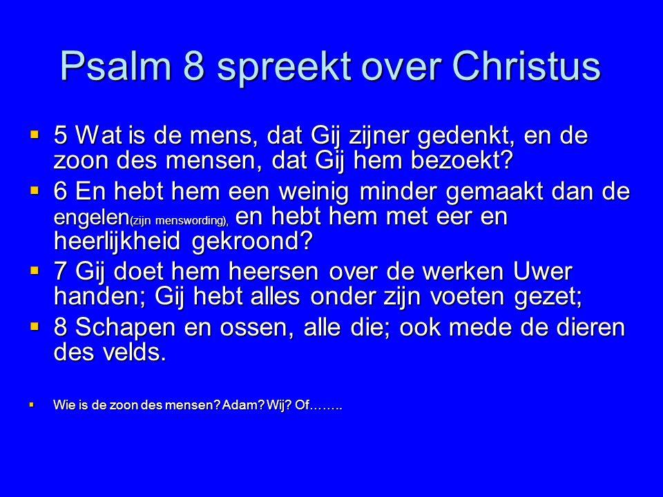 Psalm 8 spreekt over Christus