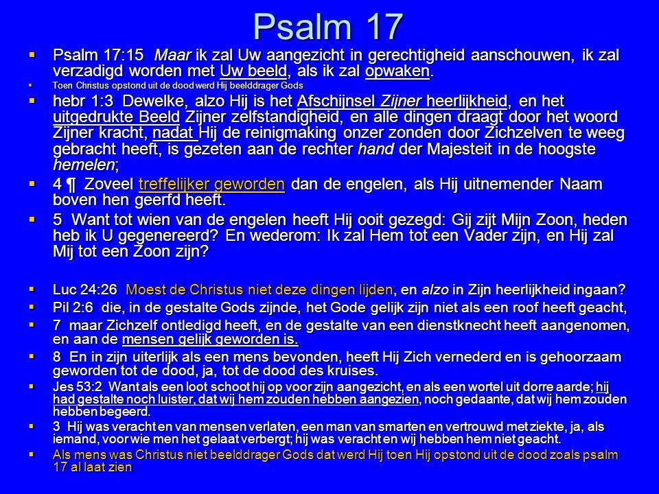 Psalm 17 Psalm 17:15 Maar ik zal Uw aangezicht in gerechtigheid aanschouwen, ik zal verzadigd worden met Uw beeld, als ik zal opwaken.