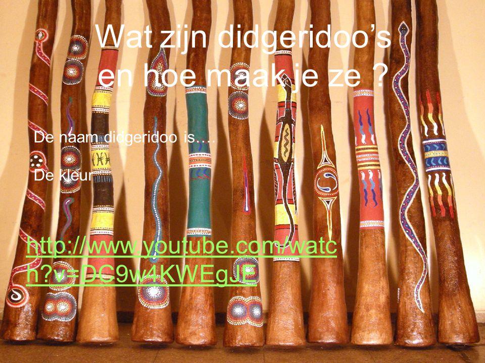 Wat zijn didgeridoo's en hoe maak je ze
