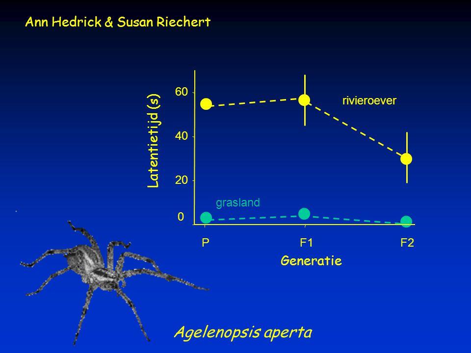 Agelenopsis aperta Ann Hedrick & Susan Riechert Latentietijd (s)