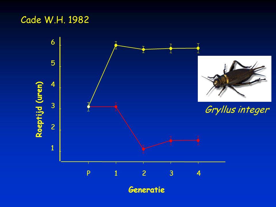 Cade W.H. 1982 Gryllus integer Roeptijd (uren) Generatie 6 5 4 3 2 1 P