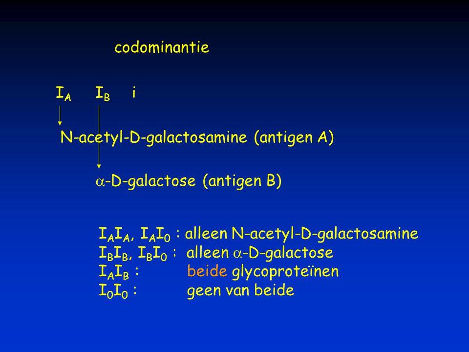 N-acetyl-D-galactosamine (antigen A)
