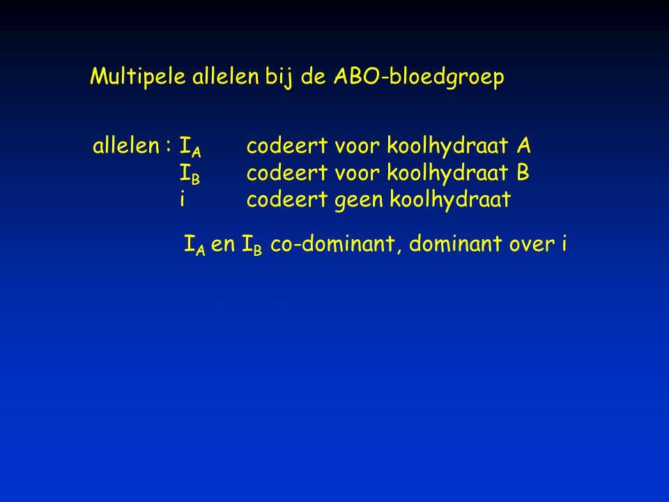 Multipele allelen bij de ABO-bloedgroep