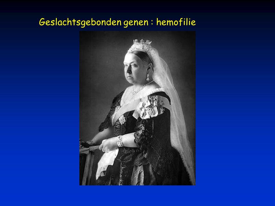 Geslachtsgebonden genen : hemofilie