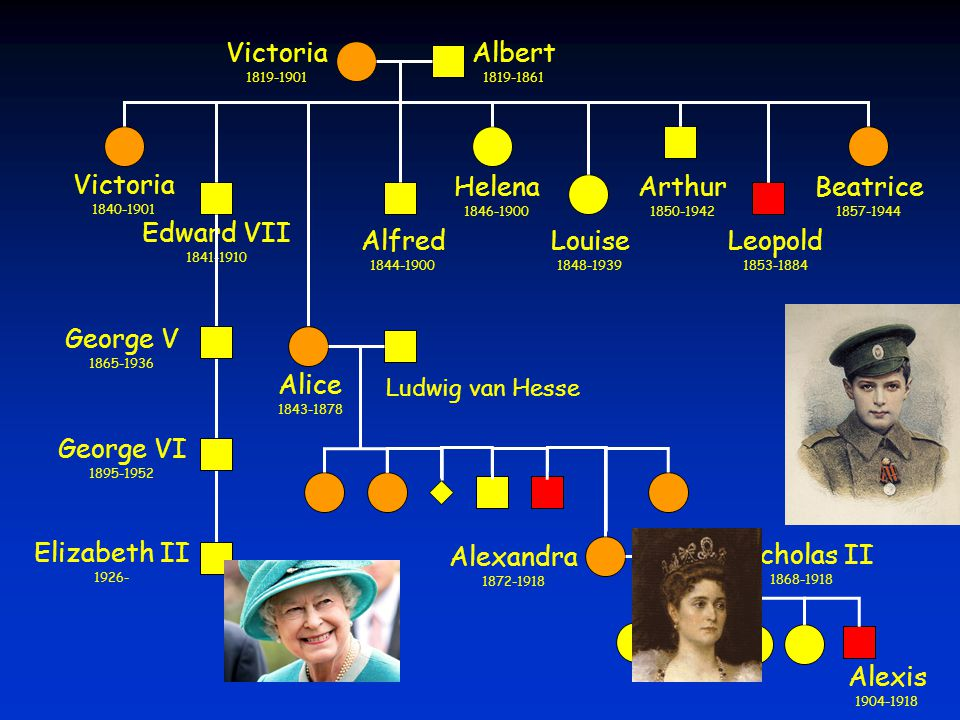 Victoria Albert Victoria Edward VII Alice Alfred Helena Louise Arthur