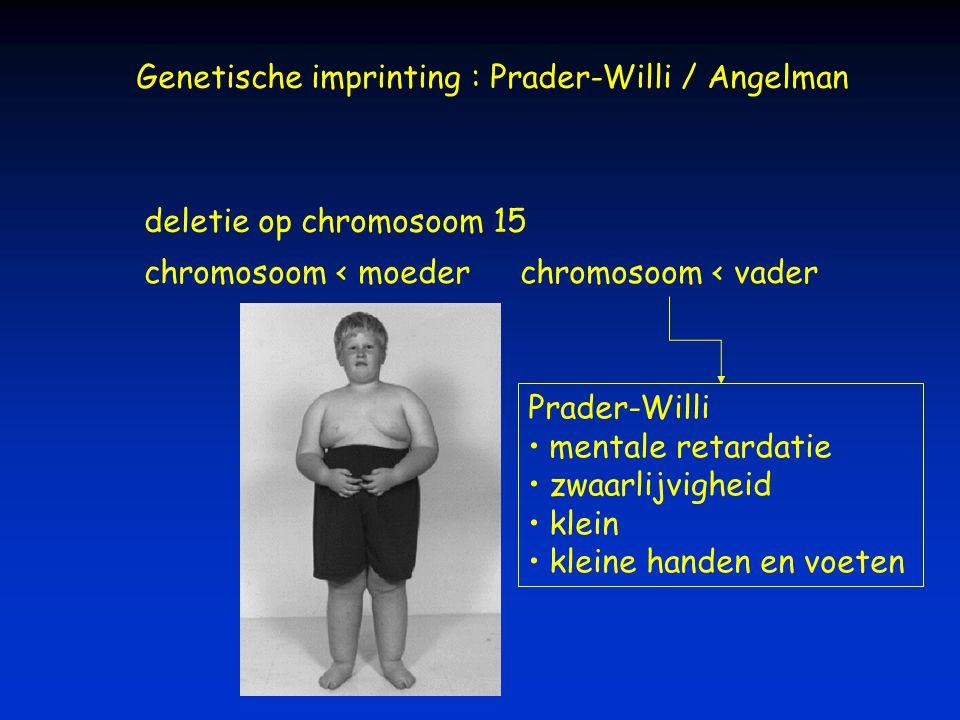 Genetische imprinting : Prader-Willi / Angelman