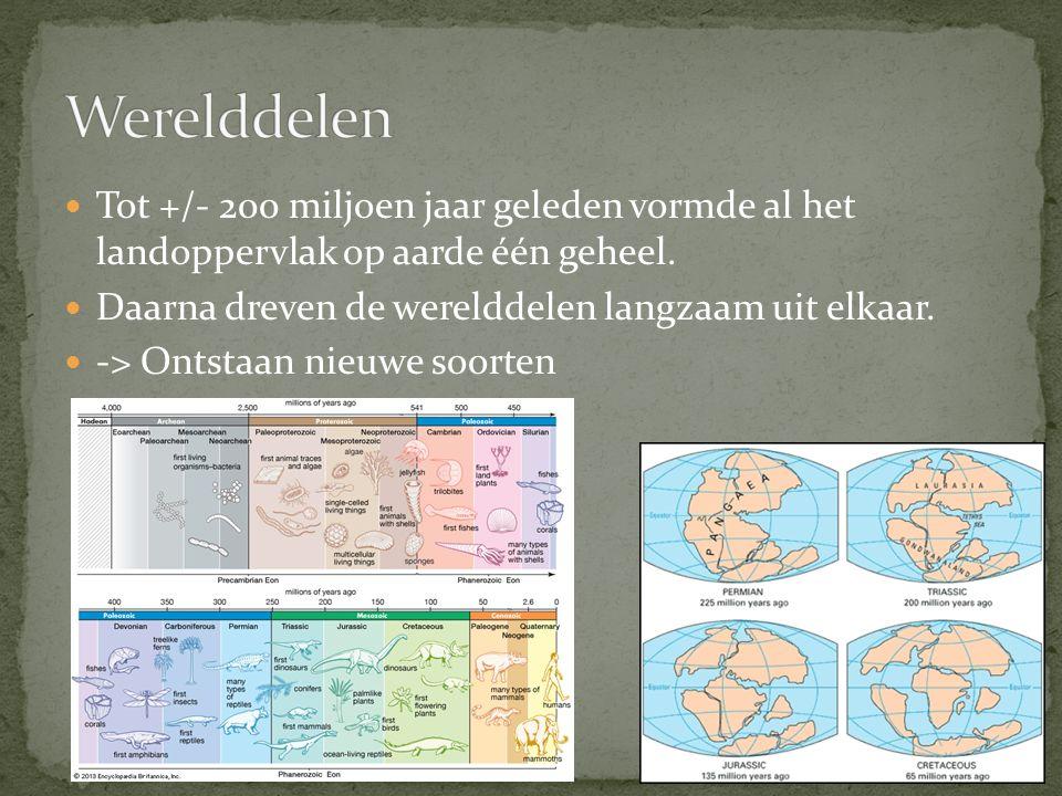 Werelddelen Tot +/- 200 miljoen jaar geleden vormde al het landoppervlak op aarde één geheel. Daarna dreven de werelddelen langzaam uit elkaar.
