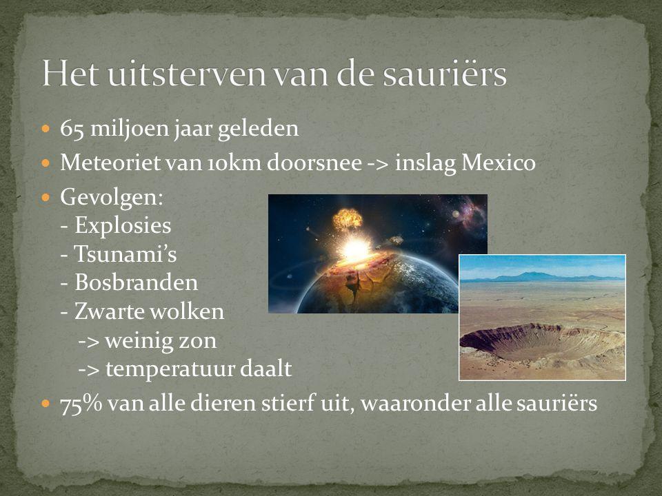 Het uitsterven van de sauriërs