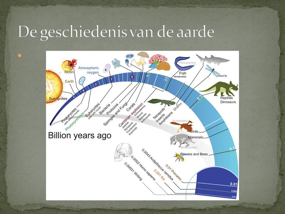 De geschiedenis van de aarde
