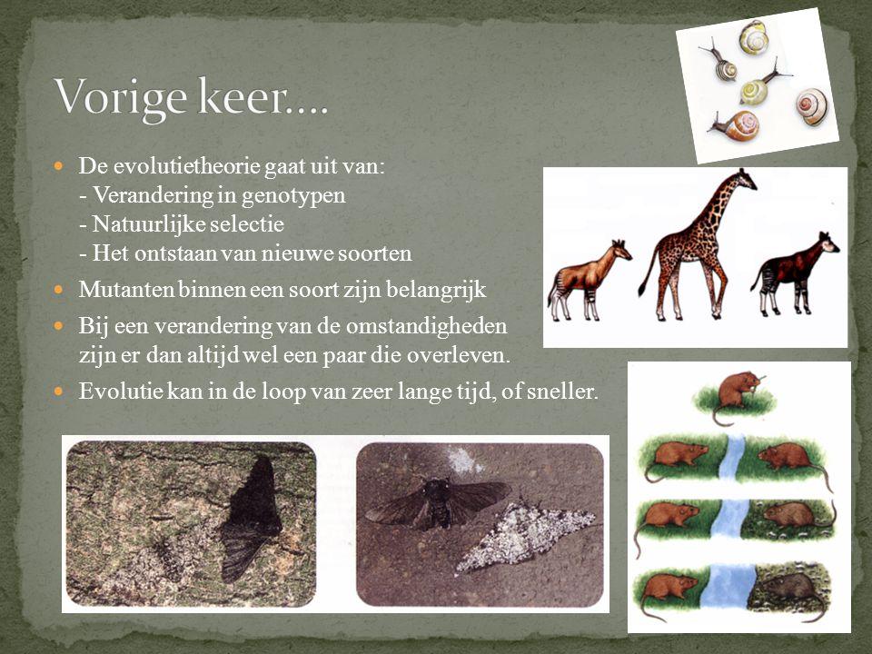 Vorige keer…. De evolutietheorie gaat uit van: - Verandering in genotypen - Natuurlijke selectie - Het ontstaan van nieuwe soorten.
